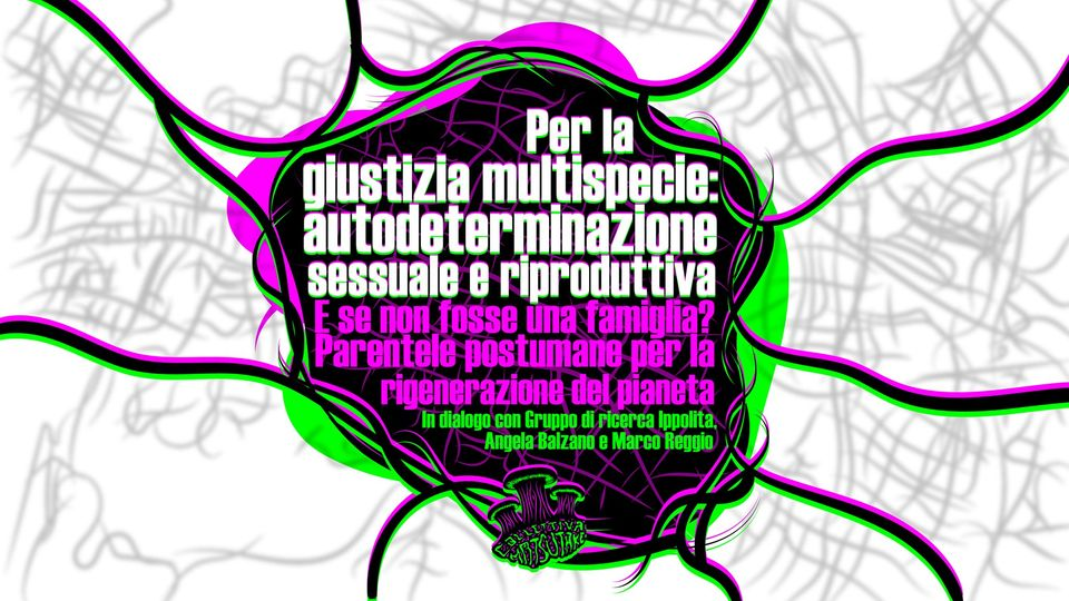 Parentele postumane Balzano, Reggio, Ippolita